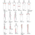 Измерения женской фигуры (Бурго)