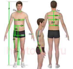 Мерки индивидуальной мужской фигуры (итальянская система кроя)